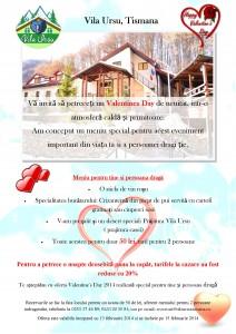Vila Ursu Valentines day