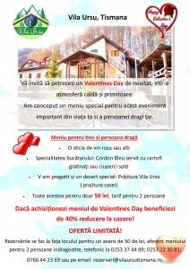 Vila Ursu Valentines day pdf